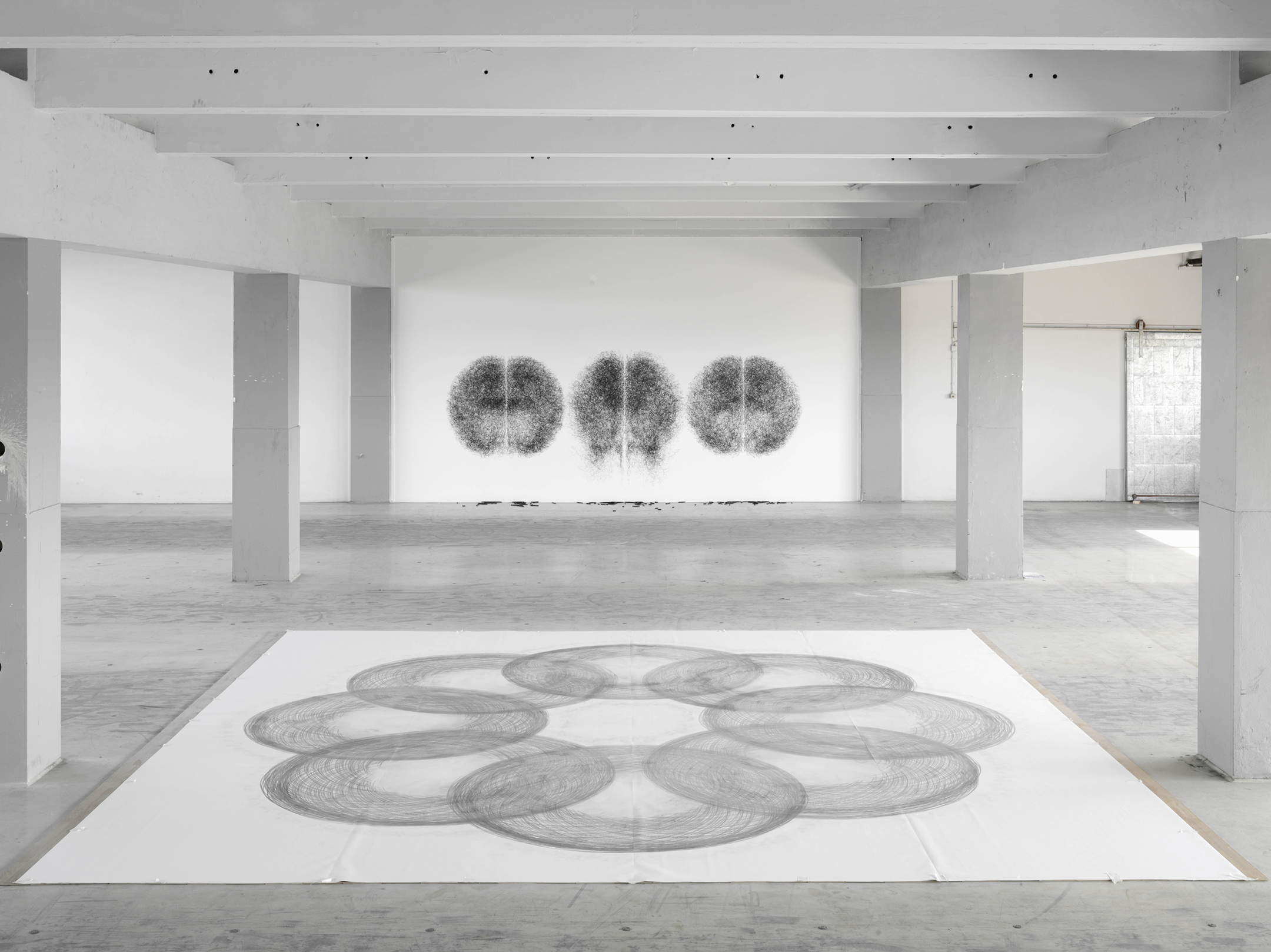 Tony Orrico – Penwald – Conceptual performance art